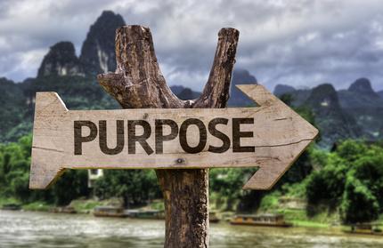 Finding Purpose in Grandparenting